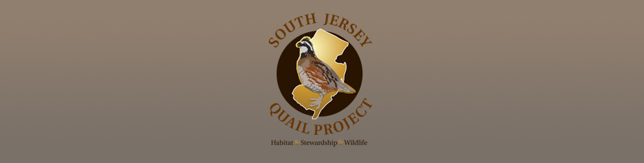 South Jersey Quail Project